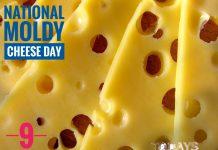 NATIONAL MOLDY CHEESE DAY Todays Affair